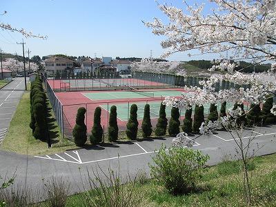 s-tenis1